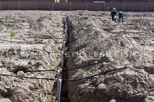 لوله پلی اتیلن آبیاری وکشاورزی